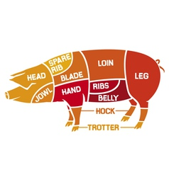 Cuts of pork - meat diagrams vector