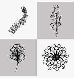 set branches with leaves and flower with petals vector image vector image