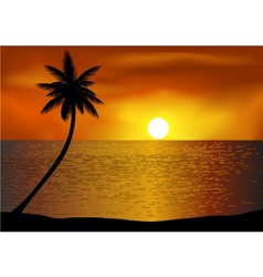 Tropical beach background vector image vector image