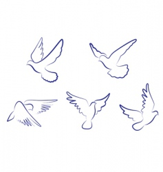white doves vector image vector image