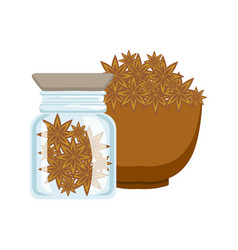 Stars of anise in a brown bowl and glass jar vector