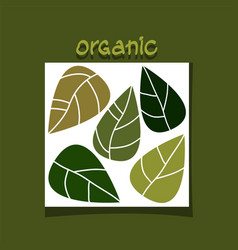 Abstract simple design with green leaves organic vector