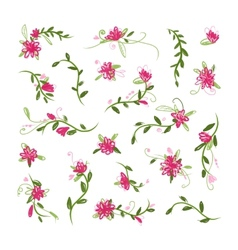 Floral collection for your design vector image