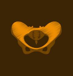 flat shading style icon pelvic bones vector image vector image