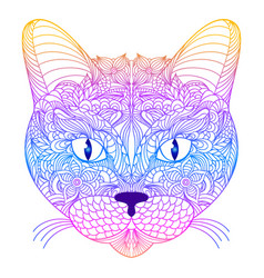 head of cat vector image vector image
