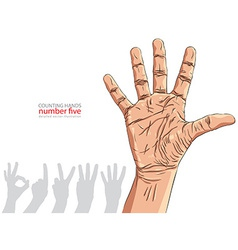 Numbers hand signs set number five detailed vector image vector image