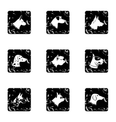 Types of dogs icons set grunge style vector image vector image