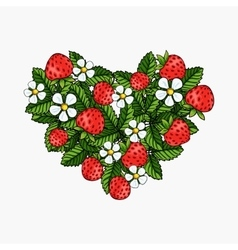 beautiful strawberries composition heart vector image