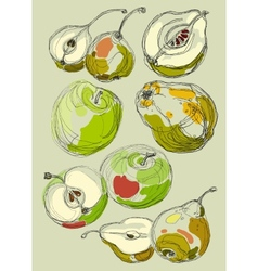 Fruit set hand drawn apples and pears vector image