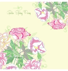 Background with peonies and pink rose vector