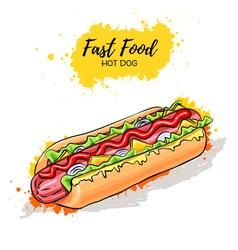 Hand drawn Hot Dog Fast Food sketch vector image