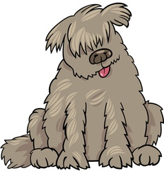 newfoundland dog cartoon vector image