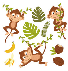 set of isolated monkey with plants and fruits vector image vector image