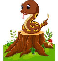 cartoon funny snake on tree stump vector image