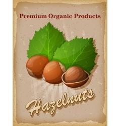 Hazelnuts vintage poster vector