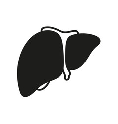 Liver icon on white background vector