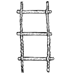 Rope-ladder vector