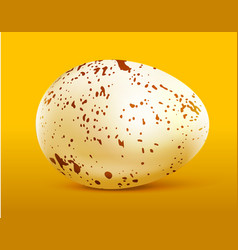 Quail egg with spots on yellow vector