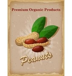 Peanuts vintage poster vector image