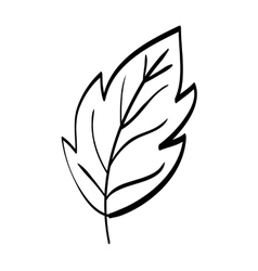 Leaf icon eco and green design graphic vector