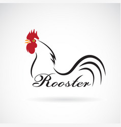 rooster on white background farm animals vector image vector image