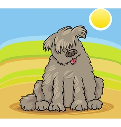 Newfoundland dog cartoon vector