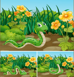 Three scenes with green snake in garden vector