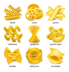 Pasta types icons set vector