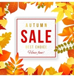 Sale banner with autumn leaves vector image