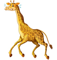 Giraffe running away from something vector image