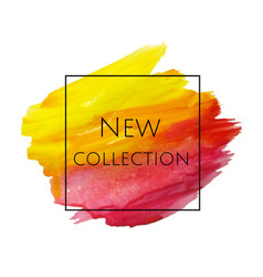 new collection banner vector image