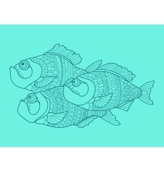 Piranha color drawing vector