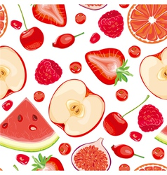 Seamless pattern of red fruits and berries vector image vector image