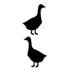 Goose silhouette vector