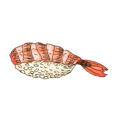 Sushi with shrimp vector