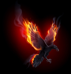 Fire raven vector image vector image