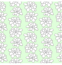 Succulents seamless pattern for textile design vector