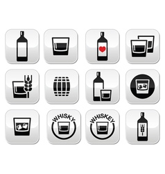 Whisky or whiskey alcohol buttons set vector