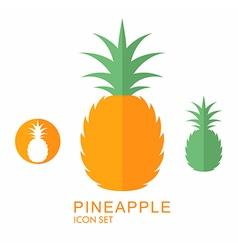Pineapple icon set vector