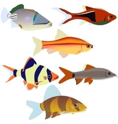 Aquarium fish-2 vector