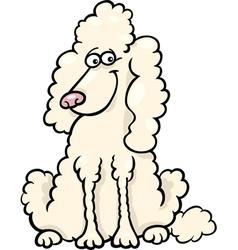 poodle dog cartoon vector image