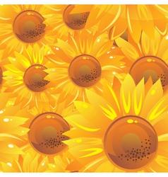 Glossy sunflower wallpaper vector