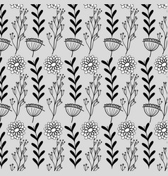 Branches with leaves and flowers with petals vector