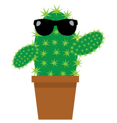 cartoon cactus vector image vector image