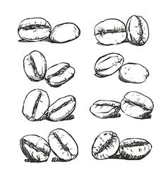 Coffee bean Hand drawn sketch vector image