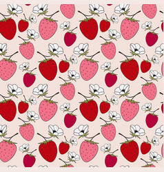blossom strawberries seamless pattern red berry vector image