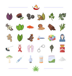 Spices business hobbies and other web icon in vector