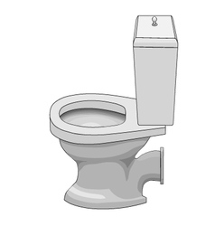 Ceramic toilet bowl vector image vector image