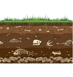 soil with dinosaur bones vector image