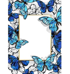 Rectangular banner with butterflies morpho vector